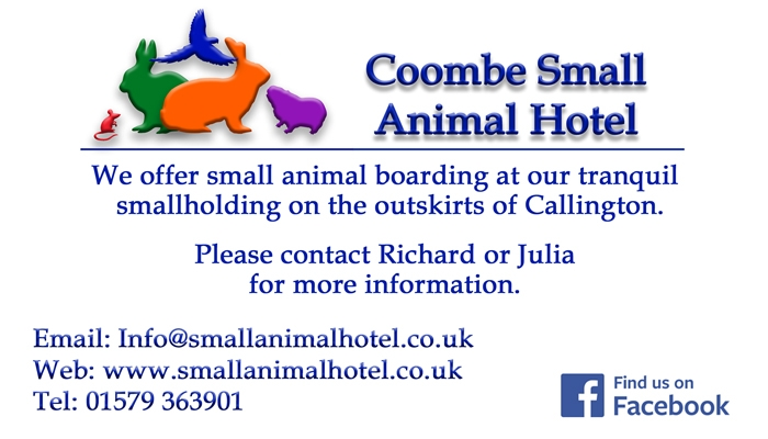 Coombe Small Animal Hotel