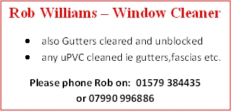 Williams Window Cleaner