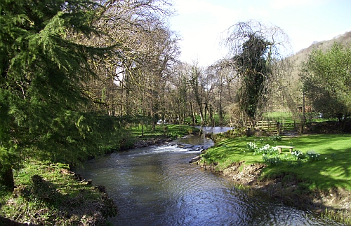 River Lynher at Bicton Bridge